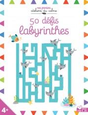 50 défis labyrinthes