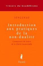 Introduction aux pratiques de la non-dualité