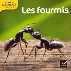 Les Docs Ribambelle Cycle 2 éd. 2014 - Les fourmis