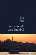 Somnambule dans Istanbul