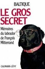Le Gros secret