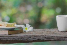 Les livres de poche de l'été