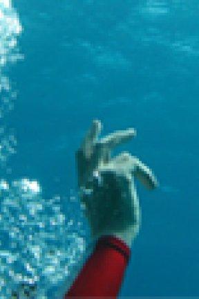 10 commandements trash de la vie de nageur