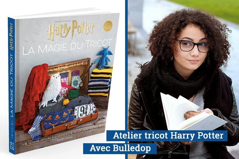 """""""La Magie du Tricot"""" : créez votre écharpe aux couleurs d'Harry Potter avec Bulledop !"""