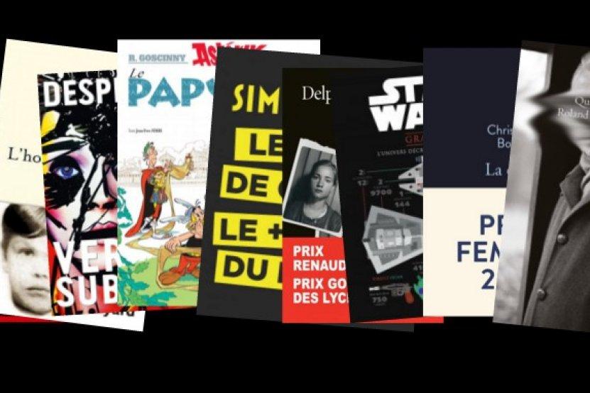 Les livres qui ont marqué l'année 2015 (en images !)